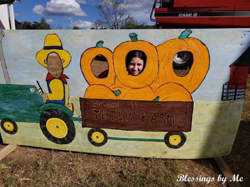 fun at the pumpkin patch